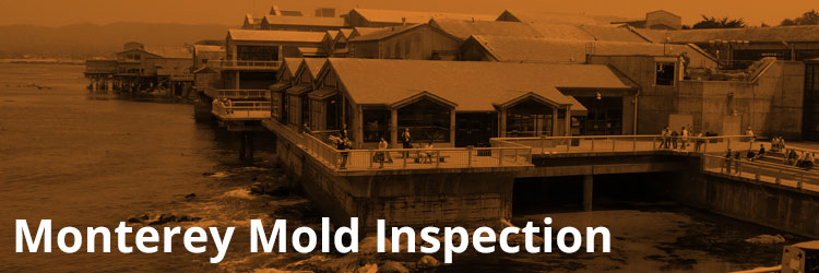 Monterey Mold Inspection and Remediation