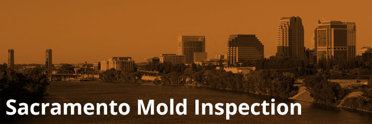 Sacramento Mold Inspection and Remediation
