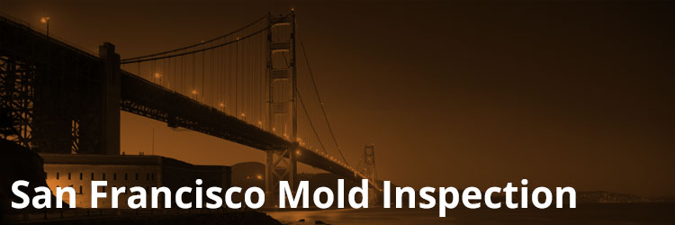 San Francisco Mold Inspection and Remediation