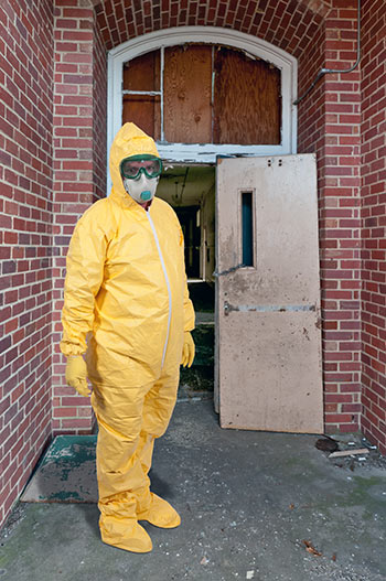 Mold Removal And Remediation Ir Environmental