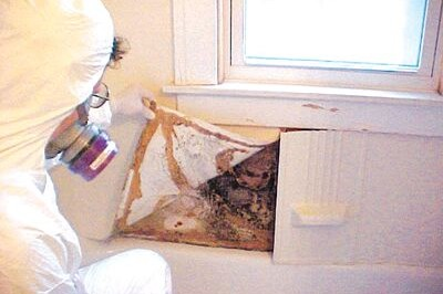 Most Common Places To Find Mold In Your Home Ir