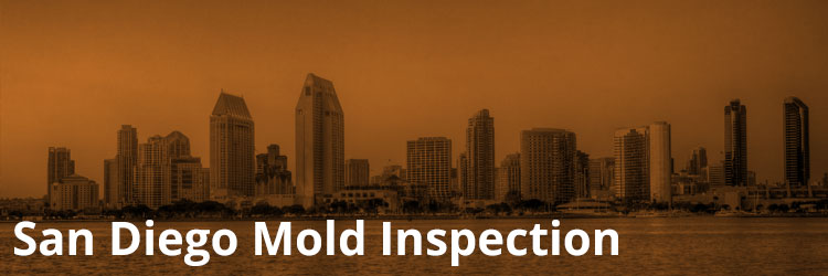 San Diego Mold Inspection and Remediation